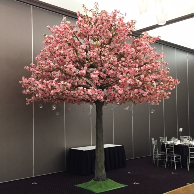 5m Pink Cherry Blossom Trees Harbourside Decorators