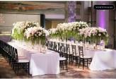 Black Glossy Tiffany Chairs at MCA