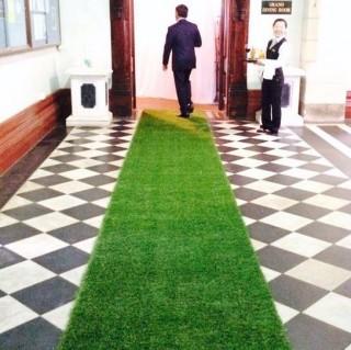 Artificial Grass Runner