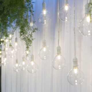Fancy Light Bulbs