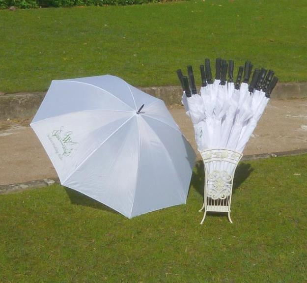 Umbrella & Stand