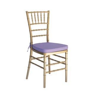 Coloured Chair Cushions